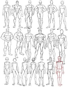 Human Anatomy Drawing, Drawing Body Poses, Body Reference Drawing, Human Figure Drawing, Guy Drawing, Art Reference Poses, Anatomy Reference, Anatomy Sketches, Art Drawings Sketches