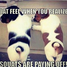 Get the best home workouts for women in fitness. Punch, lift and tone your body to get fit, strong and healthy without a gym membership. Workout Memes, Gym Memes, Crossfit Memes, Workout Songs, Workout Ideas, Workout Shirts, Funny Gym Quotes, Funny Memes, Humor Quotes