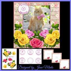 CAT IN ROSES MINI KIT