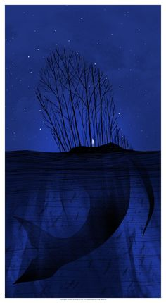 Whale in the night. The Decemberists poster Daniel Danger Band Posters, Cool Posters, Music Posters, Retro Posters, The Decemberists, Into The Wild, Blog Art, Illustrator, Behind Blue Eyes