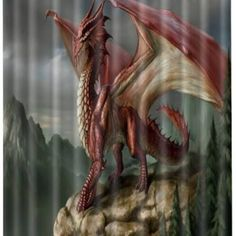 dragon shower curtain - Google Search