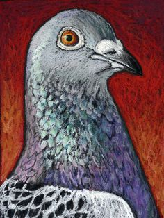 Original Oil Pastel Painting of a Racing Pigeon by AndeHallFineArt, $30.00