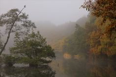 人はこの世に生まれきて 得しらぬ途(みち)を行くなれば げにさまざまの山河を 越ゆべき旅の身なるぞや  -島崎藤村「母」より(新潮文庫『藤村詩集』)-