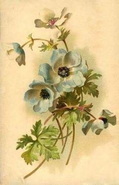 Мобильный LiveInternet Catharina Klein (Катарина Кляйн). 1861-1929 | Вельветуча - Дневник Смородиновое_настроение |