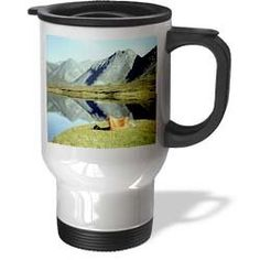 Cool! :)) Pin This & Follow Us! zCamping.com is your Camping Product Gallery ;) CLICK IMAGE TWICE for Pricing and Info :) SEE A LARGER SELECTION of camping glasses,cups and mugs at http://zcamping.com/category/camping-categories/camping-cooking-and-food/camping-glasses-cups-and-mugs/ -  #hunting #campingessential  #campingaccessories #campingutensils #kitchenutensils #campingcookware #camping #campinggear #campsupplies  -   Camping On A Lake – 14oz Stainless Steel Travel Mug « zCamping.com