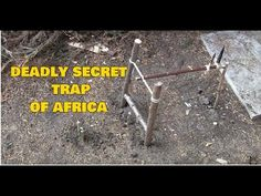 Survival Traps: Deadly Secret Trap Of Africa - YouTube