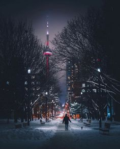 In 5 days this will be my first trip to and we are starting in Tell me where to eat! All the things to maximize 24 hours in this amazing city! Toronto Snow, Toronto Canada, Quotes About Photography, Street Photography, Toronto Images, Canada Snow, Toronto Nightlife, Summer Shots, Tokyo Streets