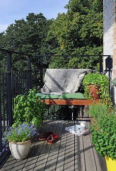 100 ιδιαίτερα ΜΠΑΛΚΟΝΙΑ | ΣΟΥΛΟΥΠΩΣΕ ΤΟ Outdoor Spaces, Outdoor Living, Outdoor Decor, Small Balcony Garden, Small Balconies, Malaga, Dream Garden, Outdoor Gardens, Terrace