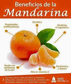 Infografia beneficios de la mandarina.