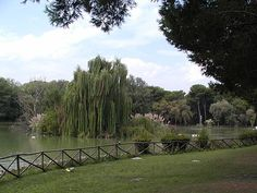 Pescara la pineta dannunzieana 02