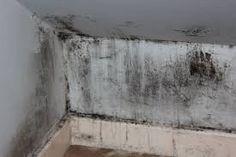 Damp proofing your drainage systems: Damp can be a major issue for many homes causing structural damage and health problems due to mould. Here are some ways to damp proof your drainage system and avoid damp creeping up the walls and floors.