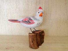 For Sale - White Cardinal  ( female ) ​$300