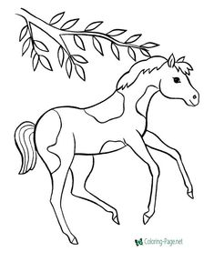 Free printable horse sheet to color Horse Coloring Pages, Cute Coloring Pages, Coloring Pages To Print, Coloring Sheets, Adult Coloring, Free Coloring, Colouring, Cute Horse Pictures, Pictures To Draw