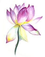 lotus watercolor tattoo - Google Search