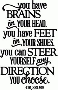 View Design: you can steer yourself any direction you choose - vinyl phrase