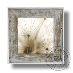Dandelion 53 Canvas Artwork Classic Series 21 x by beachframesshop