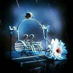 كلما إزداد عمرك كلما أيقنت أن تلك الحياة لا تستحق كل ذلك التأثر ترحل مصاعب وتأتي غيرها تموت ضحكات  تولد أخرى  يذهب البعض يأتي آخرون  هي مجرد حياة