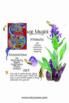 Witchcraft Herbs, Witchcraft Spell Books, Green Witchcraft, Magick, Plant Magic, Magic Herbs, Herbal Magic, Wiccan, Pagan