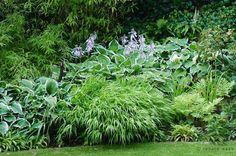 schattiger Garten - bepflanzt mit Gräsern und Stauden