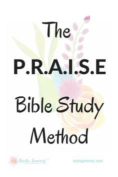 The Praise Bible Stu