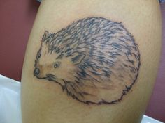 Hahaha, my tattoo has been pinned and NOT by me :) Hedgehog tattoo by ~ltatt2 on deviantART