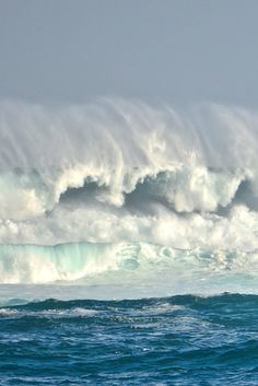0ce4n-g0d:  Missing the high-seas|jeany
