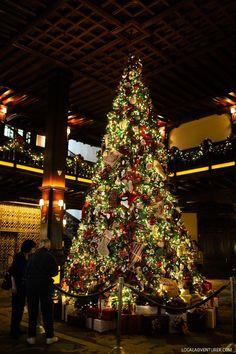 Hotel Del Coronado Ice Skating By the Sea - How to Do Christmas in San Diego California // Local Adventurer #sandiegoismyhome #sandiego #sandiegoconnection #sdlocals #sd