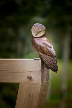 """If you're interested in learning more about """"Barn Owl"""" by Simon Gudgeon please contact us."""