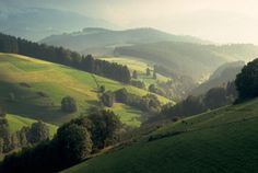Discover beautiful nature when traveling along the German Clock Route #BlackForest #visitbawu http://buzz.mw/b61ao_f