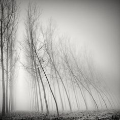 Picture Fabric: The Ticino photographer Pierre Pellegrini captures with its long exposures natural phenomena and landscapes, where reality and imagination blend together.   Day Week