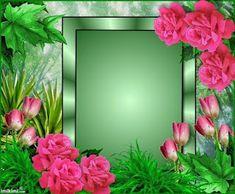 Framed Wallpaper, Phone Screen Wallpaper, Frame Background, Background Images, Valentines Frames, Creative Flower Arrangements, Frame Download, Birthday Frames, Rose Frame