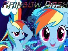 The Loyal of Rainbow Dash