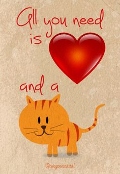 All you need is Love...and a CAT! @twogonecoastal