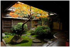 TSUBONIWA 坪庭. Lit. Área de 2 tatamis + Jardín. Jardín del patio pequeño, cerrado generalmente por las estructuras que componen una residencia, un templo, un restaurante o un bar.