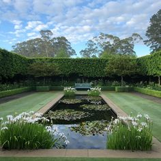 Landscape Design, Garden Design, Goldfish Pond, Pond Water Features, Front Courtyard, Pond Plants, Garden Park, Lily Pond, Private Garden