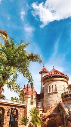 Disney World Fl, Disney Parks, Park Photography, Hollywood Studios, Magic Kingdom, Disney Vacations, Disney Love, Wonders Of The World, Disneyland