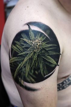 Weed Plant Tattoos On Hand Flowering marijuana plant tattoo best . Hand Tattoos, Flower Tattoos, Body Art Tattoos, Sleeve Tattoos, Cool Tattoos, Tatoos, Weed Tattoo, Plant Tattoo, Arm Tattoo