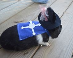 3 Musketeers costume. Guinea pig / pet Halloween costumes by la Marmota Café.