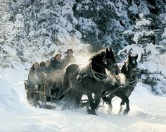 Horse drawn sleigh ride in the snow. How fantastic, horses & SNOW! Winter Magic, Winter Fun, Winter Light, Winter Sports, Winter Season, Winter Holidays, Happy Merry Christmas, Christmas Fun, Christmas Essay