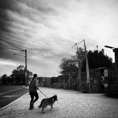 Persons Best Friend | Waverton, Sydney, Australia | October 2015 photo  © @rajsuri #environment #walking #pet #companionship #streetphotography #bw #doglover #story #film #photography #rajsuri  (at Waverton, New South Wales, Australia)Follow @RajSuri ]]>