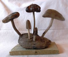 Driftwood toadstool sculpture by WoodLandSculptures on Etsy, £26.00