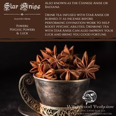 Star Anise - The Magick Kitchen Magic Herbs, Herbal Magic, Star Anise Tea, Witch Herbs, Eclectic Witch, Kitchen Witchery, Tea Infuser, Magick, Wiccan Spells