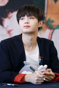 #김용국 #용국 #JINLONGGUO #JBJ#ヨングク Just Hold Me, Hold Me Tight, Taking Care Of Kittens, Jin, Kim Yongguk, Solo Male, Korean Name, Cat Names, Pop Group