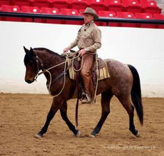Buck Brannaman 2013 I wish I could ride like that man, not to mention this horse is gorgeous!
