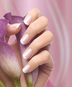 """French manicure The Most Elegant Manicure In the late the nail polish brand Orly, founded by Jeff Pink, launched the first French Nails set for the home. Orly called this set """"The Natural Nail Look & l French Manicure Nails, Manicure At Home, French Tip Nails, Manicure And Pedicure, French Pedicure, Manicure Ideas, Hot Nail Designs, Natural Nail Designs, Hot Nails"""