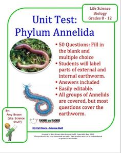 Phylum Annelida (Segmented Worms) Chapter Test.  There are 26 fill in the blank questions and 24 multiple choice questions. Topics covered are: Labeling the external and internal structures of the earthworm, characteristics of the phylum Annelida, the three classes in this phylum and the characteristics of each class, the internal organs, the body systems, and many terms such as cephalization, bilateral symmetry, hermaphroditic, germ layers, coelom, closed circulatory system.