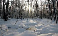 Zimski pejzaži - Page 9