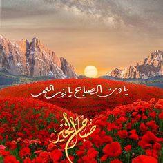 Morning Morning, Morning Wish, Morning Quotes, Beautiful Wallpaper For Phone, Good Night Wallpaper, Good Morning Arabic, Good Morning Images, Beautiful Gif, Beautiful Morning