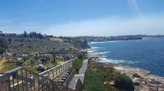 Waverly Cemetery near Bronte Beach