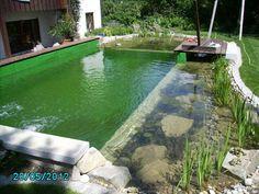 Lagos artificiales Swimming Pool Designs, Swimming Pools, Natural Swimming Ponds, Floating Deck, Rectangular Pool, Kiddie Pool, Dream Pools, Ponds Backyard, Cool Pools